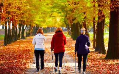 Caminatas con mayores por el Parque de los Príncipes